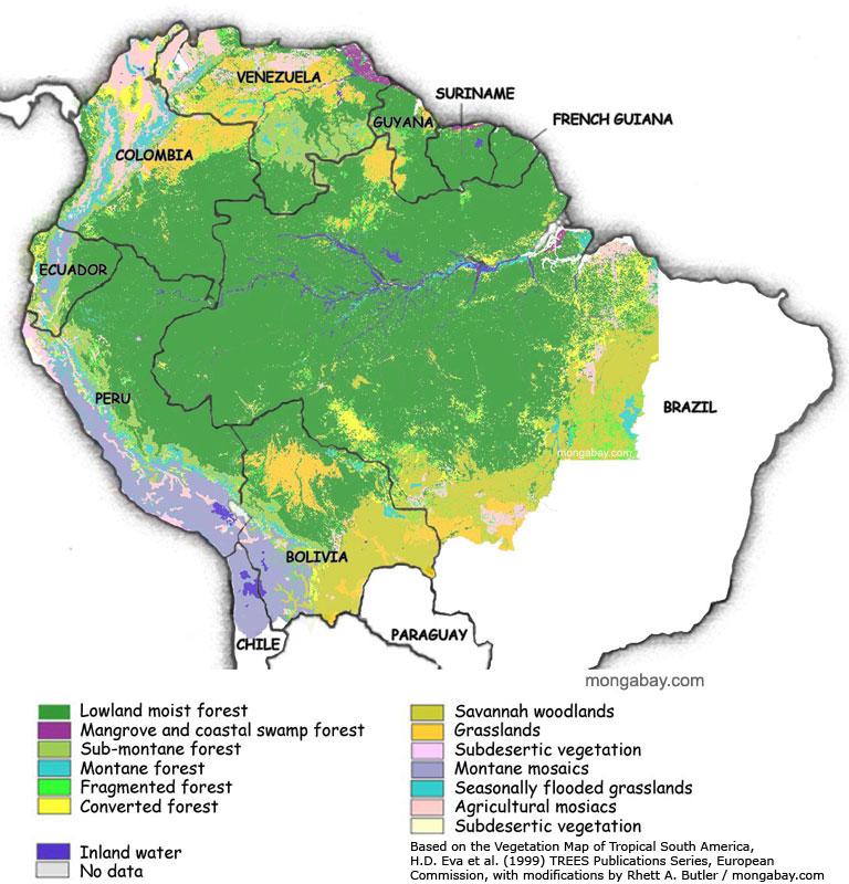 Cartograffr La Déforestation De Lamazonie
