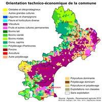 Carte du Languedoc-Roussillon avec l'orientation technico-économique des communes